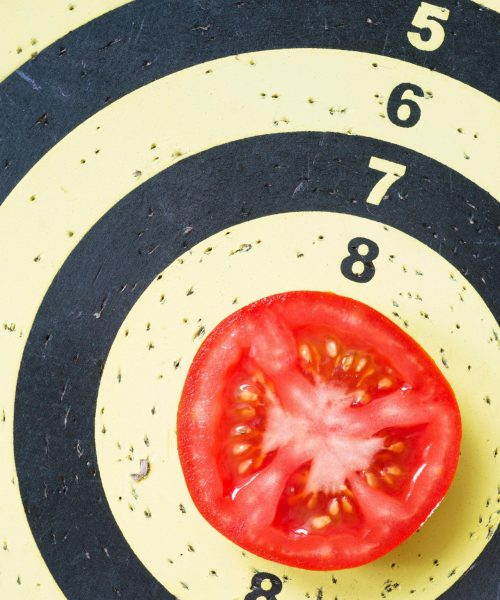 5_JAAR_GELDIG_VANAF9-6-2021_Variety Matching tomatoes your objective knowledge_verkleind-2-min
