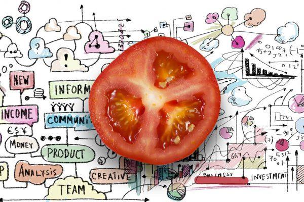 Variety Matching tomatoes strategy varieties_verkleind