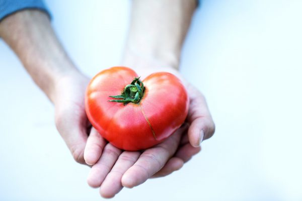 Variety Matching varieties drive passion for tomatoes flavour flavor_verkleind